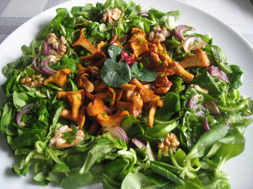 Feldsalat mit Pfifferlingen und karamellisierten Walnüssen