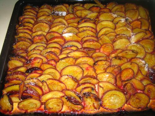 Schrats Zwetschgenkuchen mit Quarkölteig